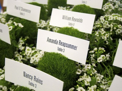 Escort cards in plants - via Flickr (donotlick)