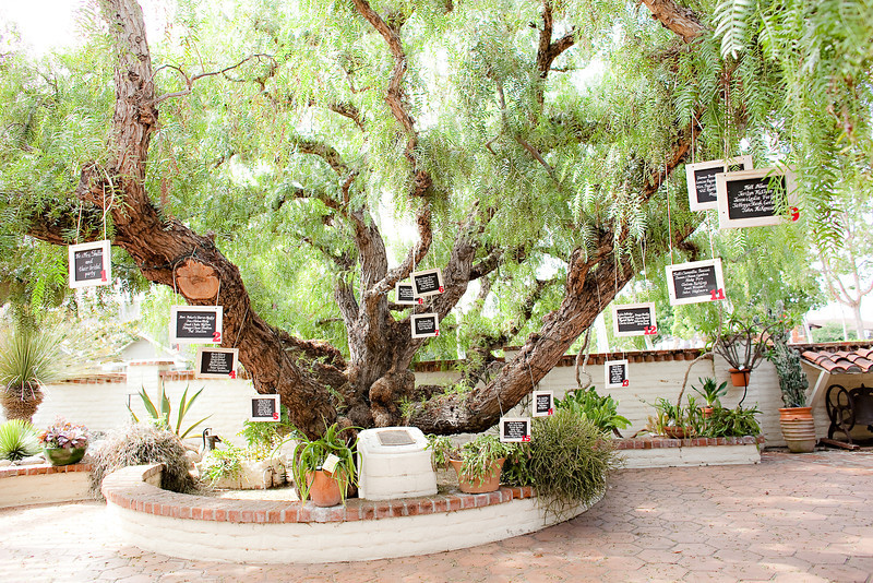 Garden table plan tree